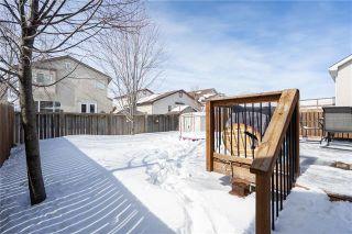 Photo 19: 7 Drake Boulevard in Winnipeg: Windsor Park Residential for sale (2G)  : MLS®# 1905737