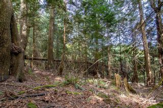 Photo 5: 8817 Canal Rd in : GI Pender Island Land for sale (Gulf Islands)  : MLS®# 874545