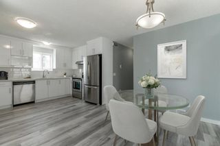 Photo 11: 23 Erin Meadows Court SE in Calgary: Erin Woods Detached for sale : MLS®# A1146245