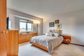 Photo 29: 16 Douglas Woods View SE in Calgary: Douglasdale/Glen Detached for sale : MLS®# A1041640