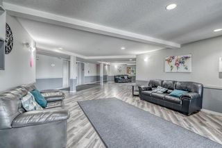 Photo 20: 417 1717 60 Street SE in Calgary: Red Carpet Apartment for sale : MLS®# A1133499