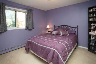Photo 10: 305 9619 174 Street in Edmonton: Zone 20 Condo for sale : MLS®# E4247422