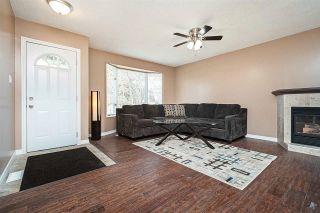 Photo 3: 14227 58 Street in Edmonton: Zone 02 House for sale : MLS®# E4239189
