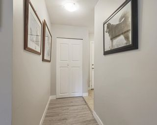 "Photo 3: 118 12238 224 Street in Maple Ridge: East Central Condo for sale in ""URBANO"" : MLS®# R2610162"