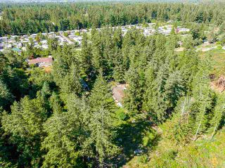 Photo 15: 19860 30 Avenue in Langley: Brookswood Langley House for sale : MLS®# R2590552