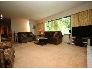 Photo 5: 10540 SUNCREST Drive in Delta: Nordel House for sale (N. Delta)  : MLS®# F1414167