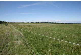 Photo 18: 3 4141 Twp Rd 340: Rural Mountain View County Land for sale : MLS®# C4123342