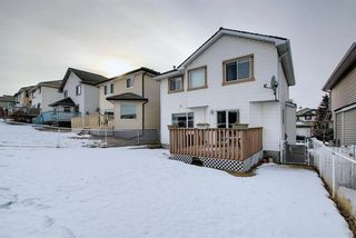 Photo 40: 144 Edgebrook Park NW in Calgary: Edgemont Detached for sale : MLS®# A1066773