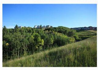 Photo 41: 136 Riviera Way: Cochrane Detached for sale : MLS®# A1132408
