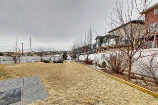 Photo 42: 135 EVANSPARK Terrace NW in Calgary: Evanston Detached for sale : MLS®# C4293070