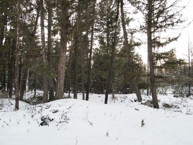 Photo 11: Photos: 1537 CHASM Road: 70 Mile House Land for sale (100 Mile House (Zone 10))  : MLS®# N232330