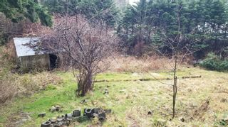 Photo 45: 1541 Croation Rd in Campbell River: CR Campbell River Central House for sale : MLS®# 870733