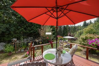 Photo 35: 3777 Laurel Dr in : CV Courtenay South House for sale (Comox Valley)  : MLS®# 870375