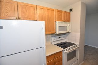 Photo 8: 417 30 Mchugh Court NE in Calgary: Mayland Heights Apartment for sale : MLS®# A1099356