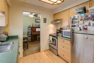 Photo 11: 7423 WREN Street in Mission: Mission BC House for sale : MLS®# R2241368