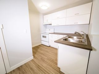 Photo 27: 9835 74 Street in Edmonton: Zone 19 House for sale : MLS®# E4248699