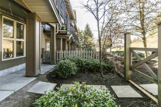 """Photo 29: 5 20326 68 Avenue in Langley: Willoughby Heights Townhouse for sale in """"SUNPOINTE"""" : MLS®# R2566107"""