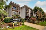 "Main Photo: 307 1442 BLACKWOOD Street: White Rock Condo for sale in ""Blackwood Manor"" (South Surrey White Rock)  : MLS®# R2544994"