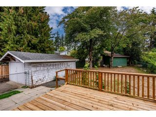 """Photo 30: 2304 MOULDSTADE Road in Abbotsford: Abbotsford West House for sale in """"CENTRAL ABBOTSFORD"""" : MLS®# R2618830"""
