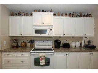 Photo 23: 155 CRAWFORD Drive: Cochrane House for sale : MLS®# C4092224