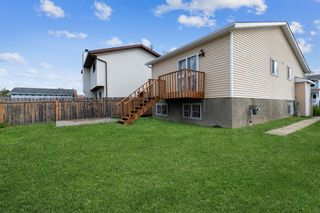 Photo 38: 23 Erin Meadows Court SE in Calgary: Erin Woods Detached for sale : MLS®# A1146245