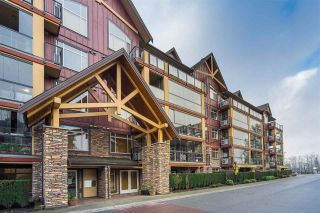 """Photo 2: 321 8288 207A Street in Langley: Willoughby Heights Condo for sale in """"Yorkson Creek"""" : MLS®# R2529591"""