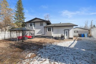 Photo 21: 117 Ross Haven Drive: Fort McMurray Detached for sale : MLS®# A1089484