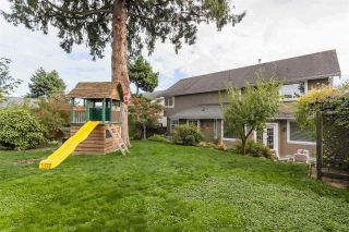 Photo 18: 3749 CLINTON Street in Burnaby: Suncrest House for sale (Burnaby South)  : MLS®# R2445399