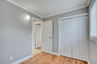 Photo 30: 355 Whitman Place NE in Calgary: Whitehorn Detached for sale : MLS®# A1046651