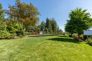 Photo 11: 9412 222 Street in Langley: Fort Langley House for sale : MLS®# R2555848