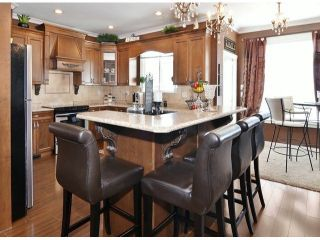 """Photo 8: 15066 61A Avenue in Surrey: Sullivan Station House for sale in """"Sullivan Heights"""" : MLS®# F1430330"""