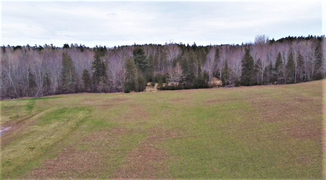 Main Photo: Lot 16-5 Douglas Road in Alma: 108-Rural Pictou County Vacant Land for sale (Northern Region)  : MLS®# 202109743