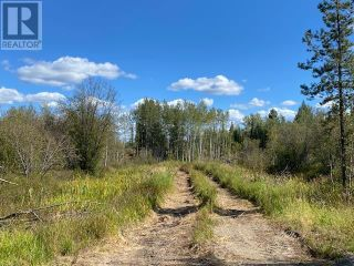 Photo 11: 3820 GOLDMAN ROAD in Quesnel: Vacant Land for sale : MLS®# R2612418
