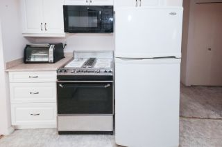 Photo 10: 21260 COOK Avenue in Maple Ridge: Southwest Maple Ridge House for sale : MLS®# R2530636