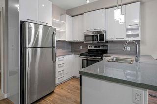 Photo 11: 305 10418 81 Avenue in Edmonton: Zone 15 Condo for sale : MLS®# E4249159