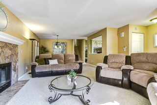 Photo 8: 22657 KENDRICK Loop in Maple Ridge: East Central House for sale : MLS®# R2110828
