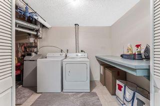 Photo 37: 21 Tararidge Drive NE in Calgary: Taradale Detached for sale : MLS®# A1088831