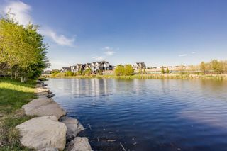 Photo 42: 1109 Coopers Drive SW: Airdrie Detached for sale : MLS®# A1083350