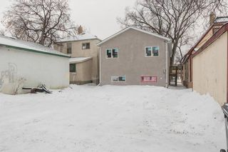 Photo 16: 321 Pritchard Avenue in Winnipeg: North End Residential for sale (4A)  : MLS®# 202108666
