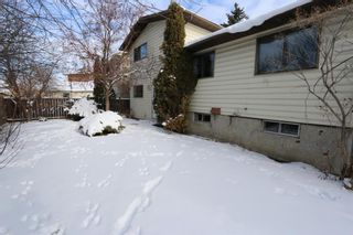 Photo 29: 547 Templeby Place NE in Calgary: Temple Detached for sale : MLS®# A1071164