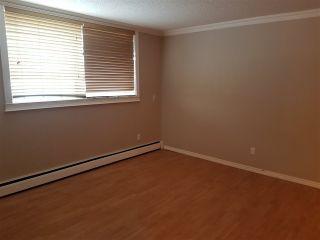 Photo 3: 2 10904 159 Street in Edmonton: Zone 21 Condo for sale : MLS®# E4229146