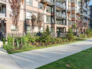"""Photo 18: 106 20829 77A Avenue in Langley: Willoughby Heights Condo for sale in """"The Wex"""" : MLS®# R2406414"""