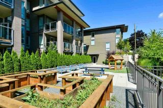 Photo 11: 406 5460 BROADWAY Avenue in Burnaby: Parkcrest Condo for sale (Burnaby North)  : MLS®# R2582737