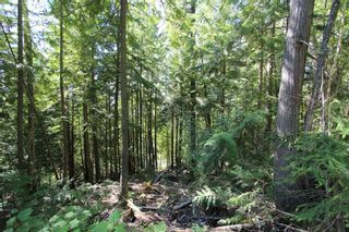 Photo 1: Lot 127 Vickers Trail: Land Only for sale : MLS®# 10071267