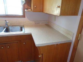 Photo 9: 4630 116 Avenue in Edmonton: Zone 23 House for sale : MLS®# E4237862