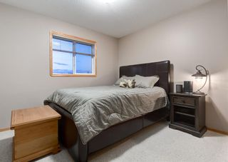 Photo 24: 103 DOHERTY Close: Red Deer Detached for sale : MLS®# A1147835