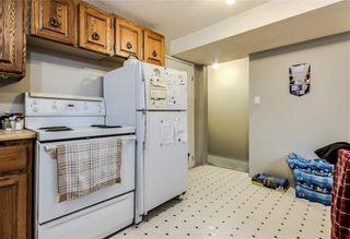 Photo 19: 4823 1 Street NE in Calgary: Greenview Detached for sale : MLS®# C4306006