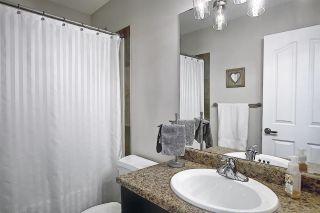 Photo 27: 9519 208 Street in Edmonton: Zone 58 House for sale : MLS®# E4241415