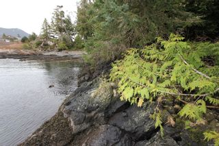 Photo 3: 1172 Coral Way in : PA Ucluelet Land for sale (Port Alberni)  : MLS®# 866410
