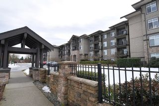 Photo 17: 118 12258 224 STREET in Maple Ridge: East Central Condo for sale ()  : MLS®# R2138523